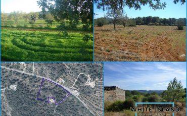 Land For Sale / Development Oppurtunities