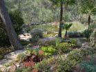 garden & ponds