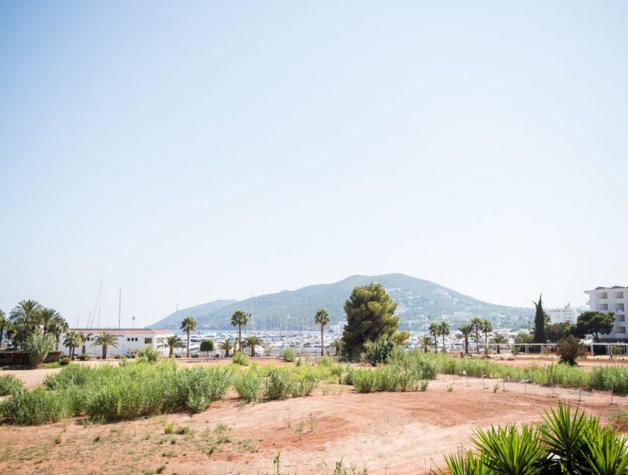 Apartment La Torre – Santa Eulalia, Ibiza Apartment for Sale – 075