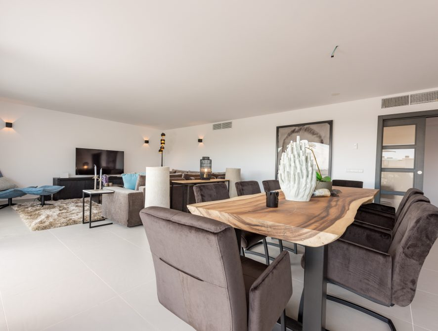 Luxury Penthouse (48)